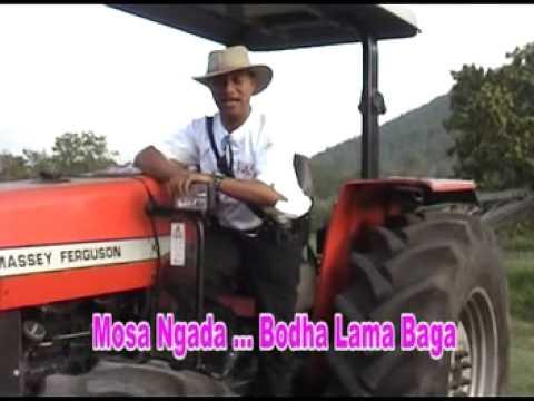 MOSA NGADA - BAJAWA SONG