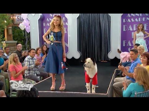 Dog with a Blog - La sfilata di moda - Dall