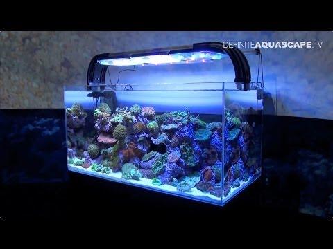 Aquarium ideas from InterZoo 2014 (pt. 5) - Tropical Marine Centre