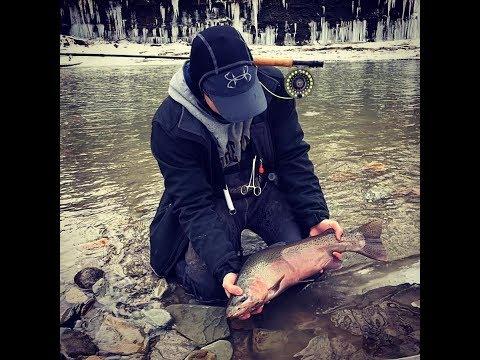 Last weekend fishing in WNY!