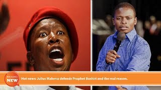 Hot news: Julius Malema defends Prophet Bushiri and the real reason