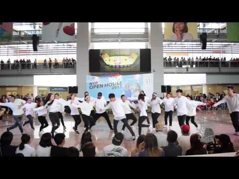 Foreign Bodies Open House 2017 Performance Day 3