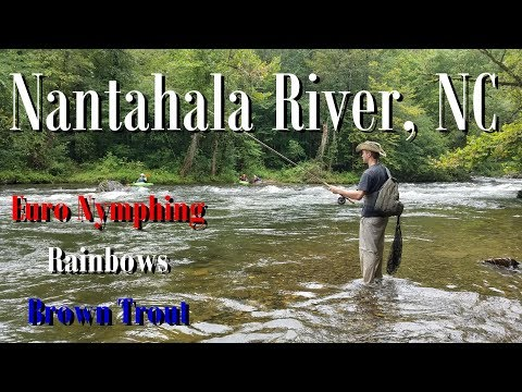 WBD - Fly Fishing/Euro Nymphing Nantahala River NC