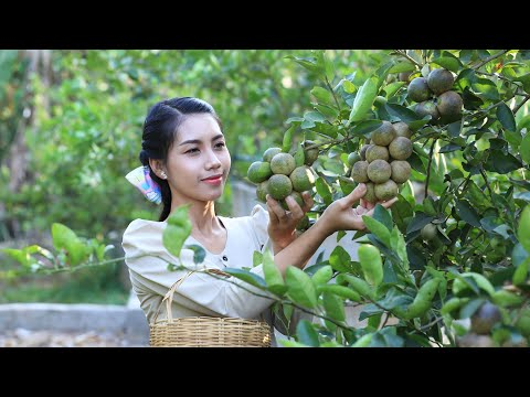 Green Lemon with Honey is very healthy food - Polin Lifestyle
