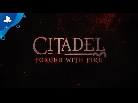 Citadel : Forged with Fire Citadel : Forged with Fire