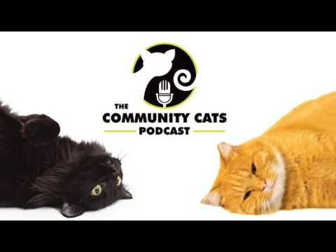 Community Cats Podcast Ep95 Jill O'Connell and Crystal Arnott