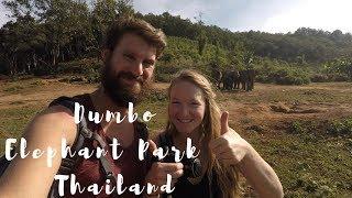 Merry Christmas! - Dumbo Elephant Park - Thailand