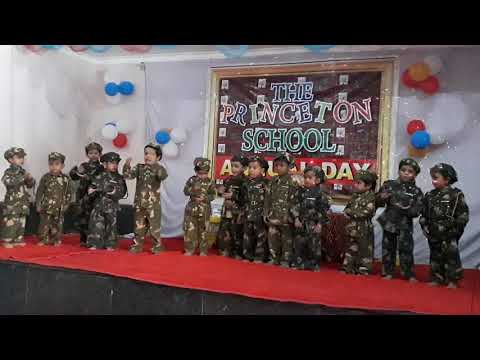 Annual day function at The Princeton school