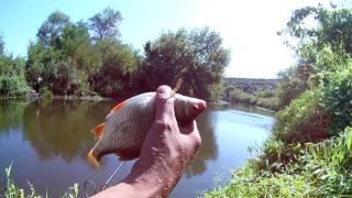 Самый лучший день! Рыбалка на реке Уды. Сазан, карась, плотва и густера.