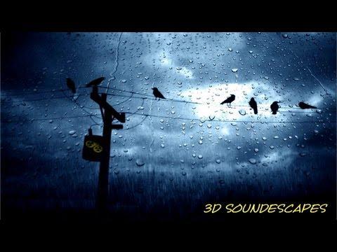 BINAURAL SOUNDS 3D (ASMR) - Heavy Rain & Thunder