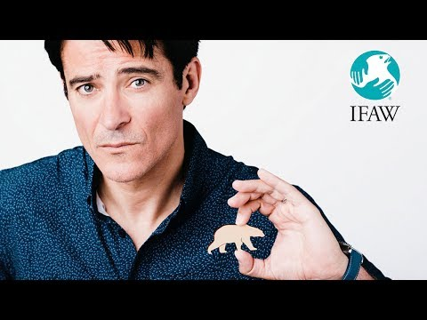 Goran Visnjic  One Act for All