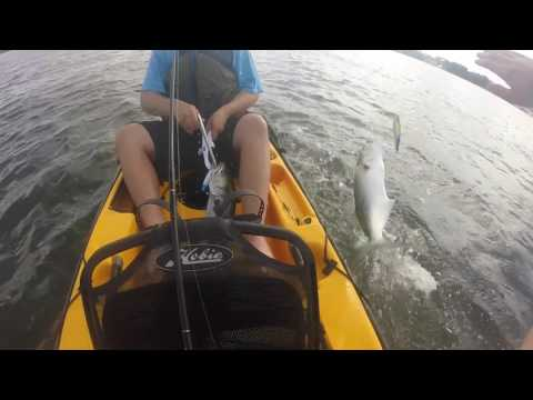 Manasquan Inlet Point Pleasant, NJ BLUEFISHING OFF KAYAK