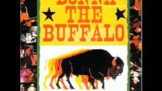 Watch Donna The Buffalo Positive Friction video