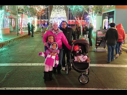 Vlog: *December 8, 2017* ~Family Holiday Fun in The Park!~