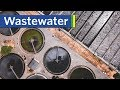 An Intro to Urban Wastewater Systems