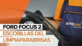 Manual del propietario FORD FOCUS II (DA_) en línea