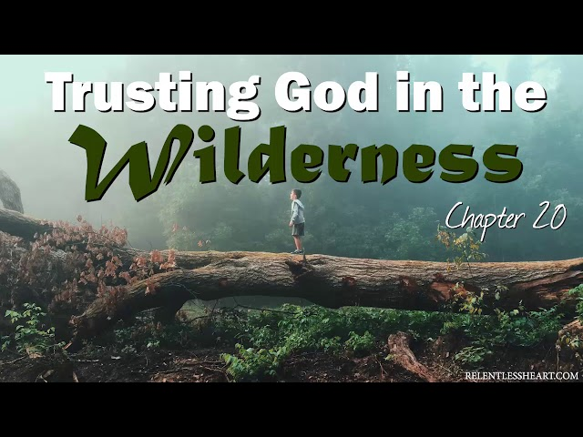 Ch. 20 - Trusting God in the Wilderness - Astonishing Grace Story