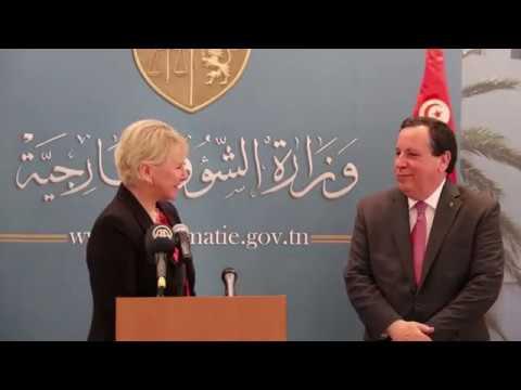 وزير الشؤون الخارجية خميّس الجهيناوي يستقبل نظيرته السويدية