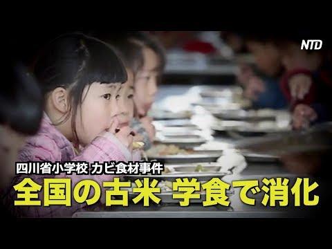 四川小学校カビ食材事件 全国の古米が学食で消化