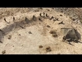 Drone View Of Desert Training mp3