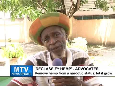 MTV News Update Jan. 11, 2017 – 'REMOVE HEMP FROM NARCOTIC STATUS' – ADVOCATES