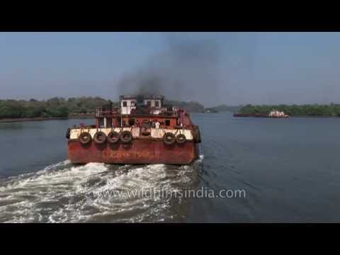 Barge on Mandovi river carrying Iron ore - Goa