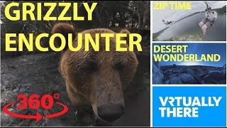 An adorable encounter with a grizzly bear in VR, scream down a crazy zipline thumbnail