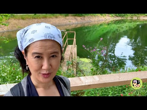 Stowe Lake, Conservatory Of Flowers : Summer Activities In Golden Gate Park