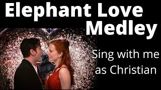 Elephant Love Medley Karaoke Female only - Sing with me!