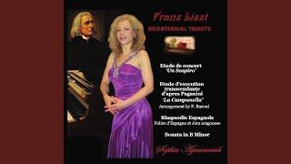 Piano Sonata in B Minor, S. 178: V. Andante Sostenuto, Allegro Moderato, Lento Assai