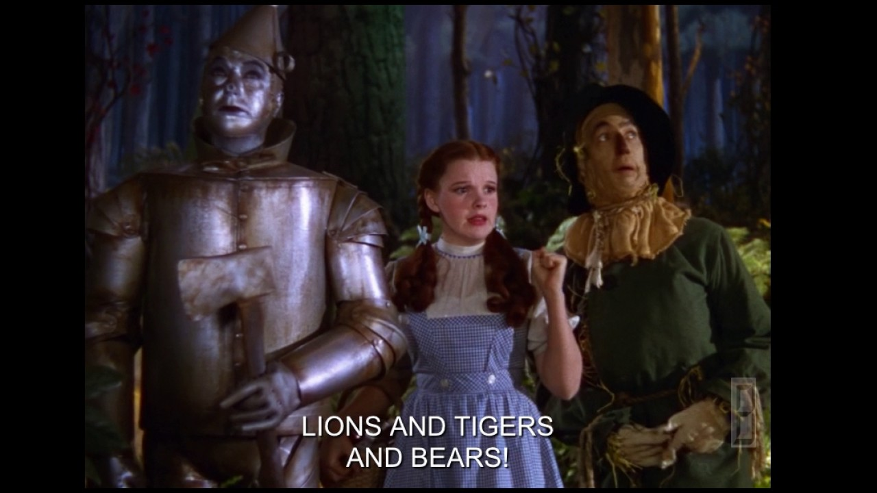 Lions and Tigers and Bears Oh MY