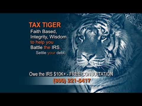 Tax Tiger 30 sec National