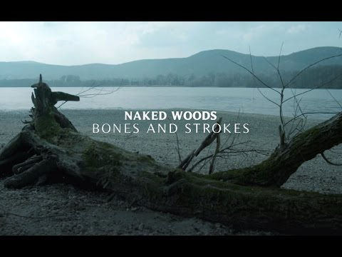 Naked Woods - Bones and Strokes