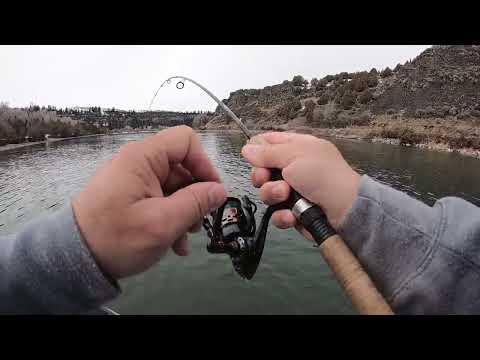 Snake River Fishing Float Trip 2019