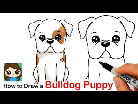 How To Draw An American Bulldog Puppy Easy 🦴❤️