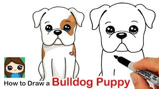 How to Draw an American Bulldog Puppy Easy