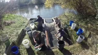 walleye rearing pond harvest michigan dnr