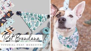 Daisy Pattern Pet BandanaScrunchie Matching Pet Bandana and Scrunchie Dual Sided and 100/% Cotton