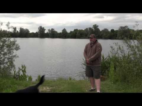 Carp Fever TV: St Ives Lakes Fishery Cambridge