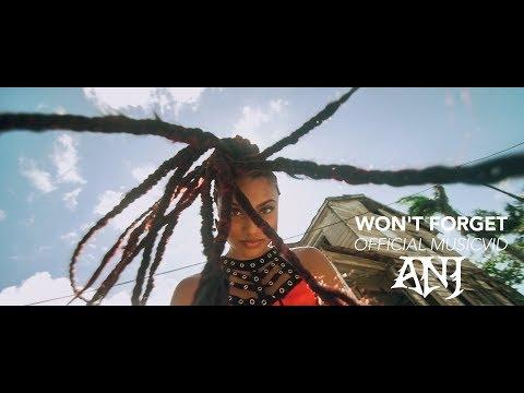 WON'T FORGET - ANJ | OFFICIAL VIDEO (PROD.SLCTBTS)