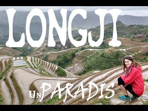 Chine  -  Les rizières en terrasse de Longji