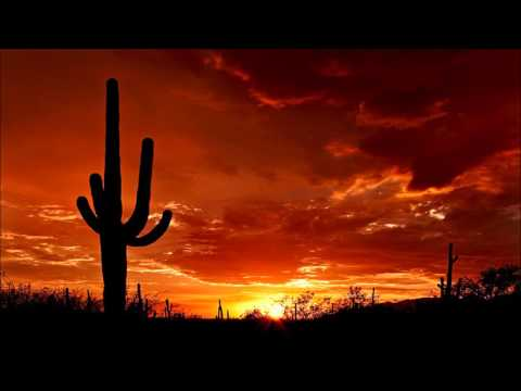 Wild Western Music - Cactus Desert