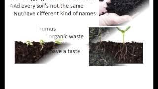 soil-song