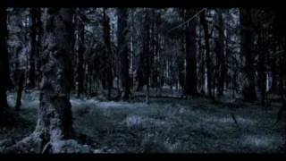 Low Red Moon Ivy Devlin Book Trailer