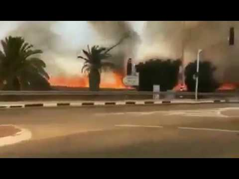 Video shows the large fires in the fields of #Israel, caused by incendiary kites from #Gaza.