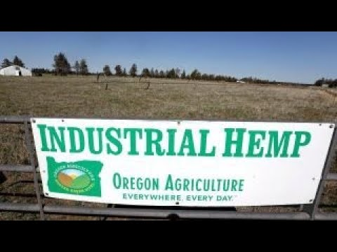 Agriculture Secretary on farm bill's hemp legalization: Hemp would be good for agriculture and US...