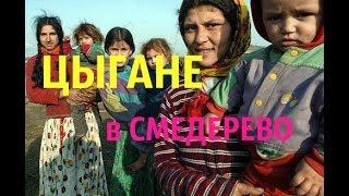 СЕРБИЯ. Цыганский поселок в Смедерево.(КРИВАК)