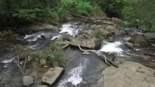 Tribal Gang : Behold with beauty of Agumbe