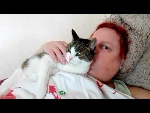 Mit Nina im Bett kuscheln... 🐈