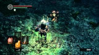 Dark Souls - Darkroot Garden Soul Farm HD